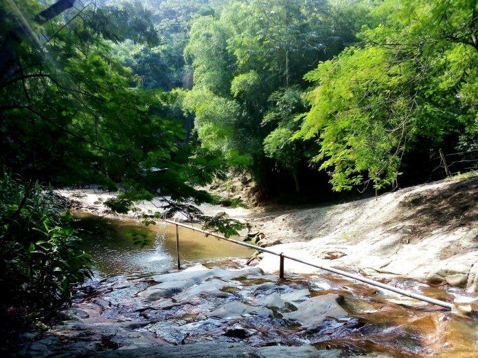 Domingo tem caminhada ecológica até o Rio Ubatiba